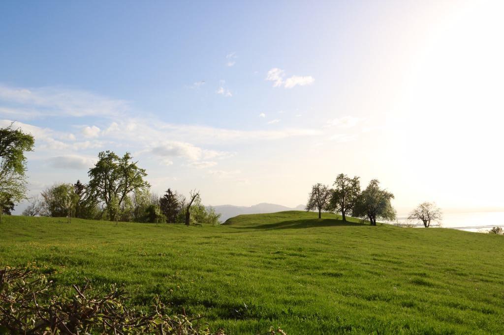 Aussicht Fritsch am Berg in Lochau