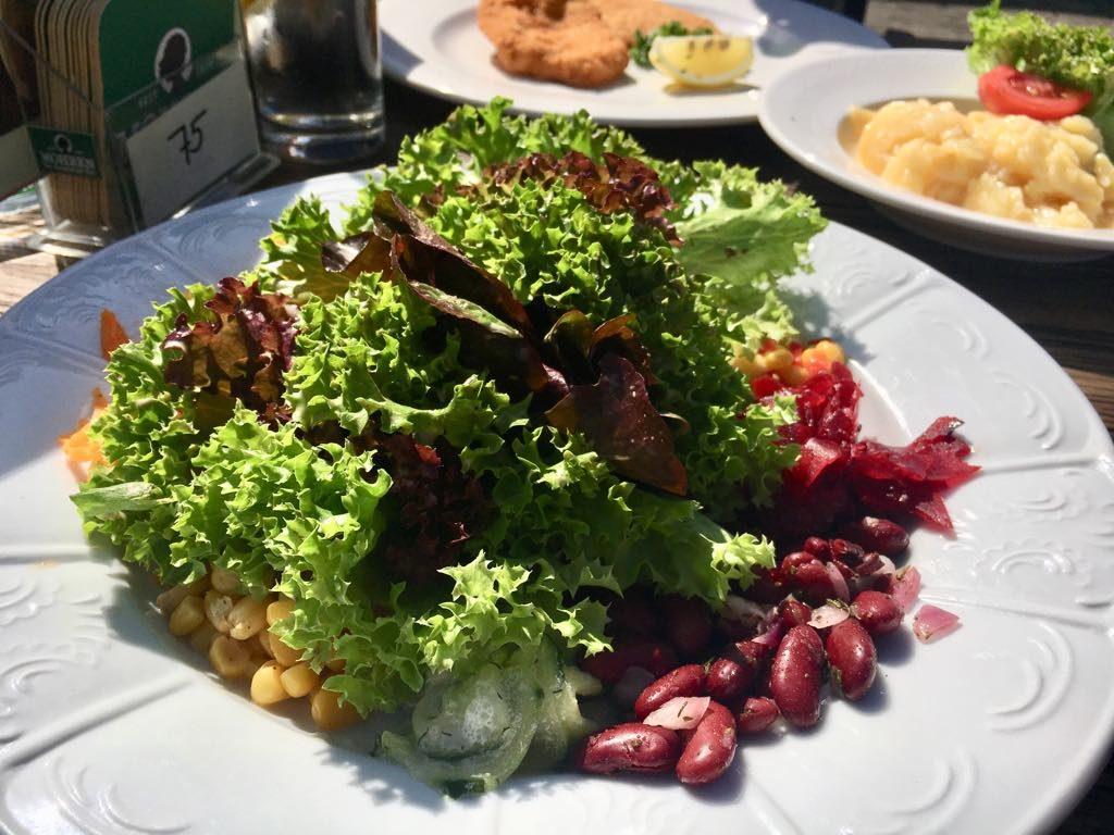 Salzmann Rohrspitz Salat