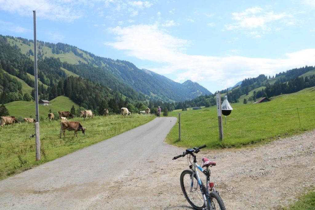 Radtour in Vorarlberg